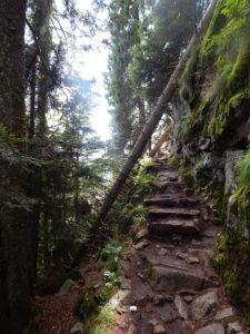 Felsenpfad Col de la Schlucht